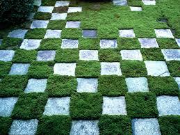 Alternative To Grass In Backyard by Making A Checkerboard Patio Garden How Tos Diy