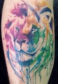 lion tattoo drawing best lion image and photo hd 2017