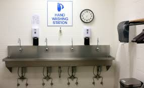 restaurant hand washing sink restaurant study group calls for back to basics approach food