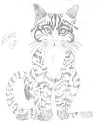 cat with kitten coloring pages alltoys for