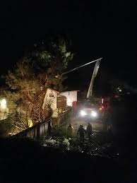 why tree work should not be your next diy home project joe benigno
