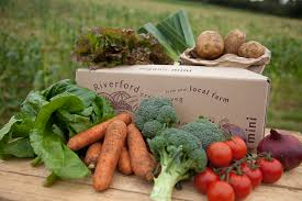 riverford organic farms home remedies and organic food benefits