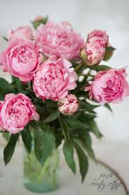 Peony Arrangement 637 Best Peonies Images On Pinterest Pink Peonies Flowers And