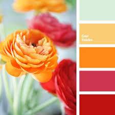 color palette 2888 color palette ideas color palettes colors