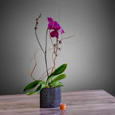 palm desert florist flower delivery by palm springs flower mart