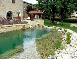 Backyard Swimming Ponds - swimming pond build u2013 benefits of natural pool in the garden