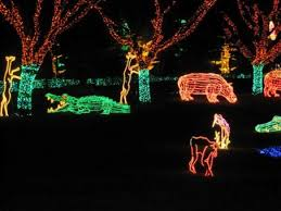 national zoo christmas lights christmas conversations and some zoo lights national animal