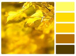 Home Decor Color Palette Color Palette Home Decor Color Palette Home Decor Keyword Images