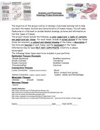 animal tissue worksheet