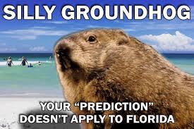 Florida Winter Meme - 6 more weeks of winter punxsutawney abc action news wfts