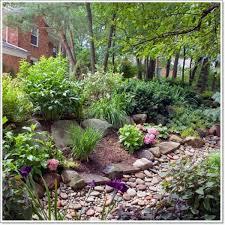 best 25 rockery garden ideas on pinterest succulent rock garden
