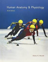 Human Physiology And Anatomy Book Human Anatomy And Physiology 6th Edition By Marieb Pearson