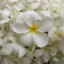 wedding flowers for september phuket laguna chapel wedding flowers wedding flowers phuket