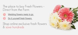 flowers direct best flower shop online flowers