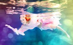 by harry fayt underwater harry fayt pinterest pin by travel gallery on harry fayt pinterest underwater and