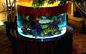 100 fish tank decorations uk 20 creative and fish