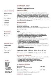 gis data analyst resume essay examples real sample professional