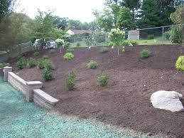 triyae com u003d backyard hill drainage various design inspiration