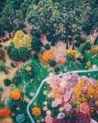 Mt Lofty Botanic Gardens Mount Lofty Botanic Garden Top View Pinterest Aerial