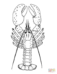 lobster coloring page free printable coloring pages