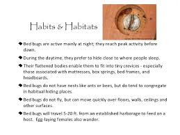 how do bed bugs travel images Bed bugs in schools jpg