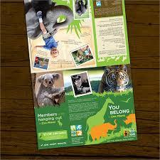 zoo brochure template zoo brochure 8 printable psd ai indesign vector eps format
