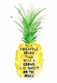 Ananas Pineapple Meme - 185 best ananas mania images on pinterest pine apple pineapple