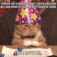 Wizard Memes - wizard kitty memes