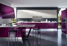 cuisine violine couleur prune conseils et idées pour décorer votre intérieur