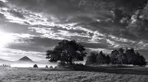 enya the memory of trees original version hd