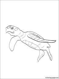 69 dessins de coloriage tortue à imprimer sur LaGuerchecom  Page 1