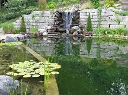 Natural Backyard Pools by 52 Best Natural Pools Images On Pinterest Natural Pools Natural