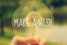 my wishes peppy pals