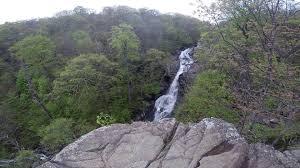 White Oak Cedar Run Falls