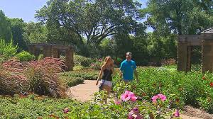 Botanical Gardens Ft Worth Experts Fort Worth Botanic Garden Needs 15m In Updates Cbs