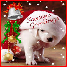 cute dog christmas wallpapers 153 best pets at christmas images on pinterest christmas dog