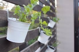 ikea hack wall herb garden u2014 alexandria mavis