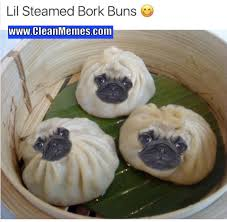 Asian Dog Meme - dog memes clean memes page 8