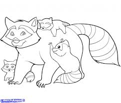 easy raccoon drawing 11 pics of raccoon coloring pages for kids