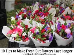 fresh cut flowers tips to make fresh cut flowers last longer