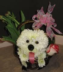 dog flower arrangement flower arrangement images with puppies all flower dog