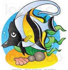 tropical fish black and white clipart clipart panda free