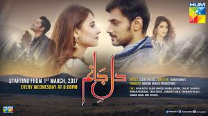 watch dil e jaanam episode 20 on hum tv 14 july 2017 vidpk