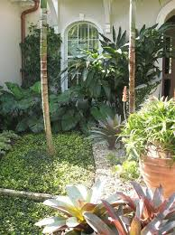 22 original diy tropical garden design u2013 izvipi com