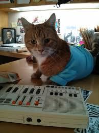 Keyboard Cat Meme - cat friday meet the guy behind keyboard cat spokane s charlie