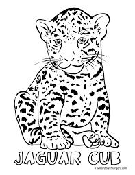 rainforest clipart jaguar pencil and in color rainforest clipart