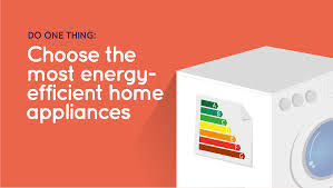 choose the most energy efficient home appliances do 1 thing