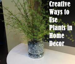 creative ways to use plants in home decor with house decor ideas