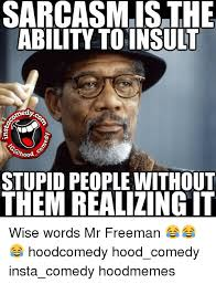 Memes About Stupid People - sarcasm is the ability to insult medy stupid people without them