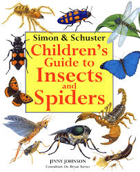 simon u0026 schuster children u0027s guide to sea creatures book by jinny